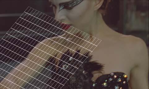 Black Swan VFX Grid